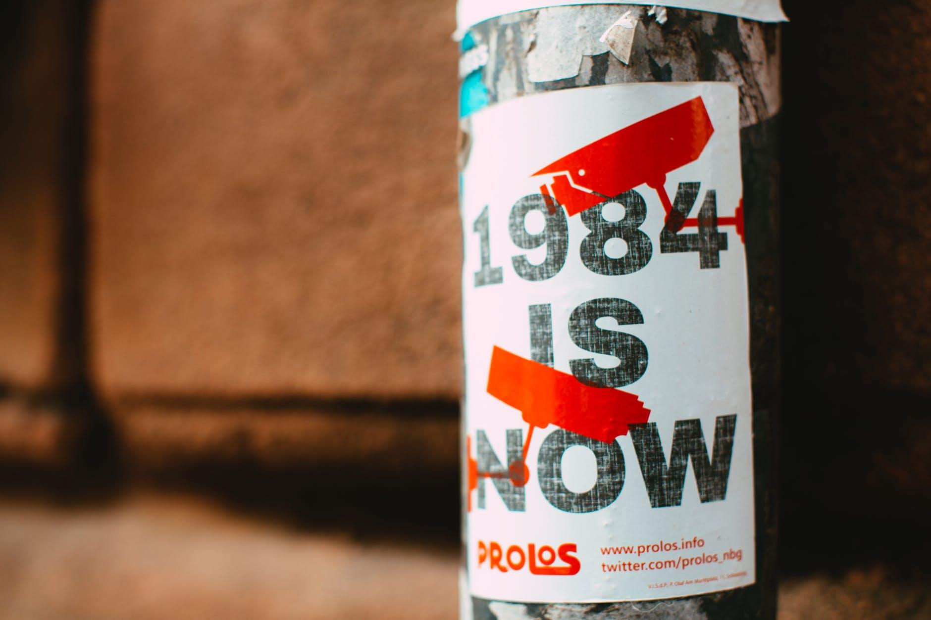 pexels-photo-3671145.jpeg